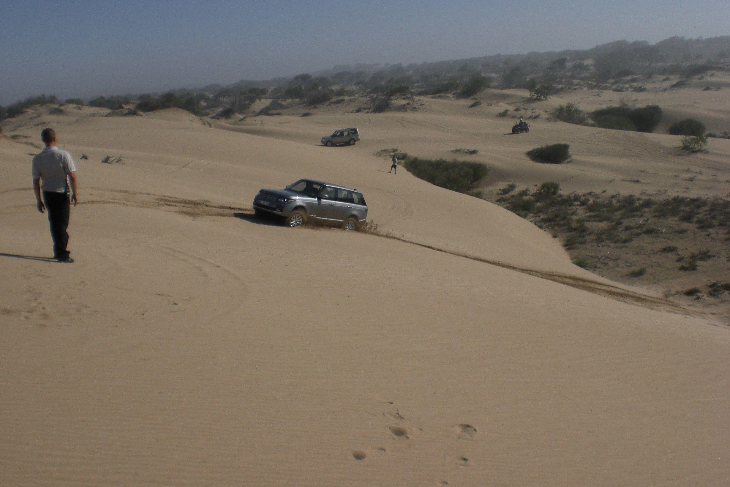 Range in der Wüste