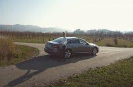 A6 Limousine, Nina Weizenecker