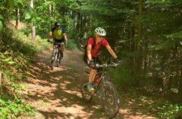 Wie verhindere ich taube Hände beim Radfahren?